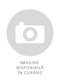 Anvelopa VARA AUSTONE MASPIRE M/T 265/75R16 123/120 Q